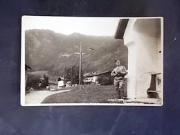 TRENTINO ALTO ADIGE -BOLZANO -CAMPO DI TRES -F.P. LOTTO N°744 - Bolzano (Bozen)