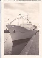 Photo D'époque: La Bateau De M. G....Moledet  Israël - Boats