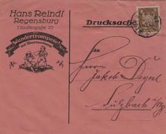 Hans Reindl - Illustriertes Kuvert - Regensburg 4.12.1924 - Storia Postale