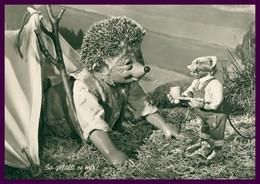 """MECKI - Hérisson Qui Fait Du Camping - Marmotte Avec Pipe - """" So Gefällt Es Mir ! """" - Je L'aime Comme ça ! - DIEHL FILM - Mecki"""