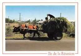 ILE DE LA REUNION - CHARETTE DE CANNES - Sin Clasificación