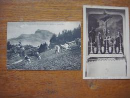 France - Haute Savoie (74) - Lot De 2 Cartes De MEGEVE ( Aiguilles De Warens Alpages Vaches Montagne Champs / Calvaire ) - Megève