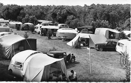 17 - VAUX SUR MER - VAUX NAUZAN - Domaine De Bernezac Caravanes Voitures D'époque  Et Toiles De Tente Près De La Forêt - Vaux-sur-Mer