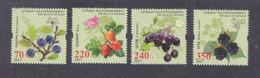 Artsakh Nagorno-Karabakh Republic 2017 Berries MNH** - Frutta