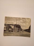 ITALIA- LAZIO-TORVISCOSA-VIALE MARINOTTI-FG-1955 - Andere Städte
