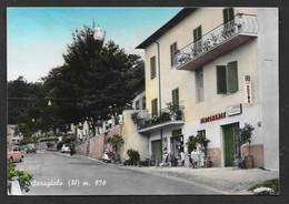 SARAGIOLO SIENA VG. 1968 N° A762 - Siena