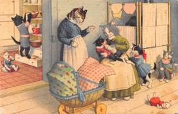 Chats - Chat  - Habillés - Biberons Bébés Poupée Poussettes Bébés - Dressed Animals
