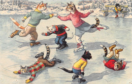 Chats - Chat  - Habillés - Patinage - Patineurs - Jeux - Patins Chute - Dressed Animals