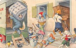 Chats - Chat  - Habillés - Déménageurs - Piano - Matelas - Œufs - Vaisselle - Camion De Déménagement - Dressed Animals