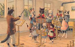 Chats - Chat  - Habillés - Ecole Musique Flûte - Clarinette - Chef D'orchestre - Dressed Animals