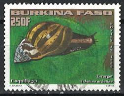 Burkina Faso 2000. Mi.Nr. 1781, Used O - Burkina Faso (1984-...)