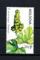 Moldavia Nº 628 Nuevo - Moldawien (Moldau)