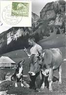 Speicher - Hund, Vieh Und Aelpler            1958 - AR Appenzell Rhodes-Extérieures