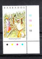 Barbados -  2004. Raccolta Della Canna Da Zucchero. Sugar Cane Harvest. MNH - Agricultura