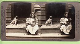 Fillette, Chien Jaloux Et Chat : Jealous Dog - Photo Stéréoscopique - American Stereoscopic New York - 2 Scans - Stereoscopic