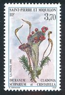 ST-PIERRE ET MIQUELON 1995 - Yv. 611 **   Faciale= 0,56 EUR - Insecte Dicranum Sur Fleur  ..Réf.SPM12084 - Unused Stamps