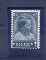 Nr. 446-V1 Postgaaf ** MNH  75 Côte - Abarten (Katalog COB)