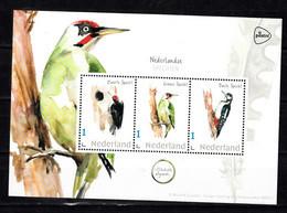 Nederland Persoonlijke Zegels PostNL Thema: Vogels, Specht, Woodpecker, ( Zwarte, Black, Groen, Green, Bonte, Spotted) - Nuovi