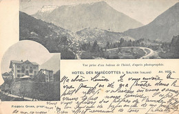 SALVAN (VS) Hôtel Des Marécottes - VS Wallis