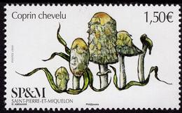 St. Pierre & Miquelon - 2020 - Fungi - Shaggy Mane - Coprinus Comatus - Mint Stamp - Unused Stamps