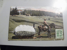 A475  . CPA. SUISSE. VS. Valais. Walliser Scène. Heuernte Mit Schlitten. Beau Plan Animé. Ecrite & Voyagée 1908 - VS Wallis