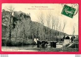CPA (Réf : Y488) BRUNIQUEL (82 TARN-et-GARONNE) Les Ponts Et Le Château - Autres Communes