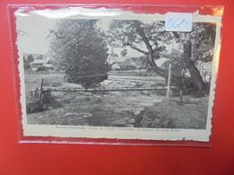BACONFOY (B614) - Tenneville
