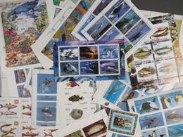 Fische, Meeresfauna über 60 Versch. Blöcke-Fish, Marine Fauna Over 60 Different Blocks - Vita Acquatica
