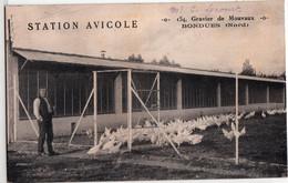 BONDUES-GRAVIER DE MOUVAUX-STATION AVICOLE - Other Municipalities