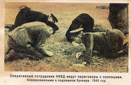 DC2672 - Militaria Germany WW2 Propaganda - Junge Soldaten Minensuche? REPRO - Guerra 1939-45