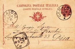 CAMAIORE - LUCCA - CARTOLINA POSTALE DA CENT.10 DEL 1900 SPEDITA IL 10/9/1901 PER PISA ARRIVATA LO STESSO GIORNO - Altre Città