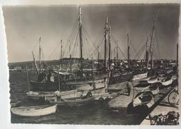 29  Camaret Bateaux De Peche Dans Le Port A Maree Haute Bateaux Barques Pecheurs - Camaret-sur-Mer