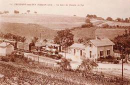 Chassigny-sous-Dun (Saône Et Loire) La Gare - Copie De Carte Postale 10 X 15 - Bahnhöfe Mit Zügen