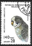 MADAGASCAR - Budgerigar (Melopsittacus Undulatus) - Madagaskar (1960-...)