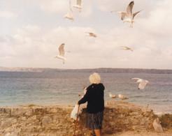 PHOTO ORIGINALE X 1 / ANNEES 1990 / CAMARET SUR MER FINISTERE / MAMIE GOELAND - Orte