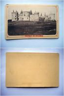 PHOTO CDV CHATEAU DE SUCCINIO SUSCINIO SARZEAU MORBIHAN BRETAGNE - Ancianas (antes De 1900)