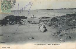 CPA 44 Loire Atlantique Saint Brevin L'Océan Anse Du Pointeau - Saint-Brevin-l'Océan