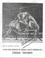 Vieux Papiers Affichette Du Cirque TRIOMPH Dompteur Et Son Lion Le Plus Beau Belluaire De L'époque ANTHONSON - Circo