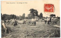 1908 BATTEURS Et BATTAGE Du COLZA - Scène Champêtre Animée - Landbouw