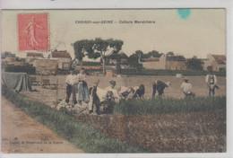 CPA Croissy-sur-Seine - Culture Maraîchère (très Belle Scène) - Croissy-sur-Seine
