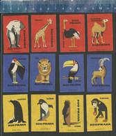 ZOO PRAHA ELEPHANT GIRAFFE PENGUIN DROMEDARY OSTRICH SEA LION OTTER MARABOU TOUCAN Czechoslovakian Matchbox Labels - Matchbox Labels
