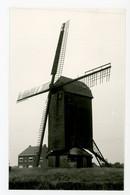 D565 - Wervik Kruiseekemolen - Foto - Molen - Moulin - Mill - Mühle - - Wervik