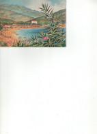 - BARRE & DAYEZ.  COTE VAROISE - CAVALAIRE Sur MER 2309 E - Barday