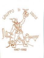 Alpini 25° Anniversario Dell Gruppo Di Pavia - Sonstige
