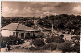 DOMINO-L'ESCALE - Ile D'Oléron