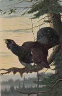 Grouse Auerhahn Tetras Le Coq De Bruyere Old Postcard Signed G.Arnould Olgemalde - Uccelli