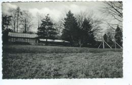 Mont-de-l'Enclus (Belgique, Hainaut) : Le Centre Méthodistes Réfectoire Et Dortoir à Amougies - Mont-de-l'Enclus