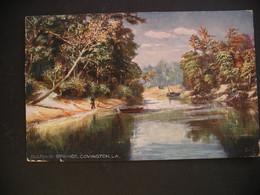 Sulphur Springs,Covington,LA 1908 - Other