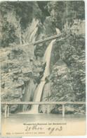 Beckenried 1903; Wasserfall Risleten - Nicht Gelaufen. (Charnaux Frères & Cie. - Genève) - NW Nidwalden