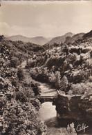 MERCUS: L'Ariège Au Pont Du Diable ; N° 1518 - Otros Municipios